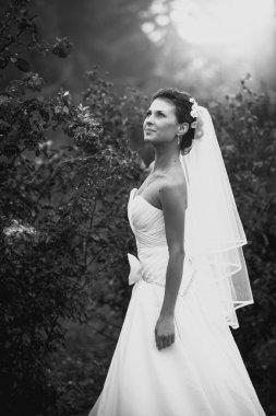 Portrait of bride at rose garden
