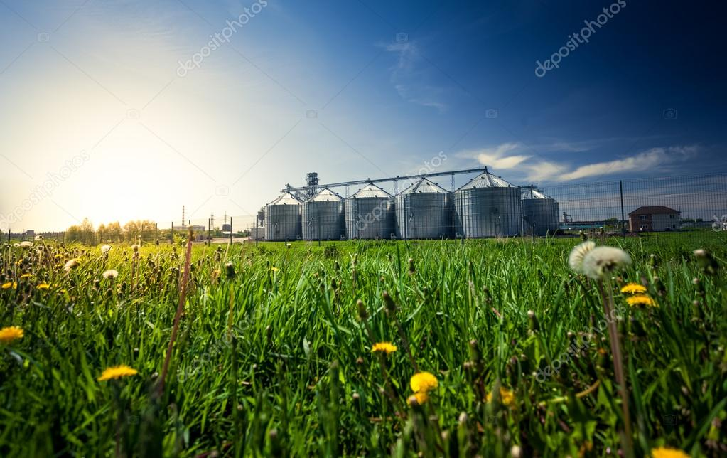 photo of grain elevators in meadow at sunset