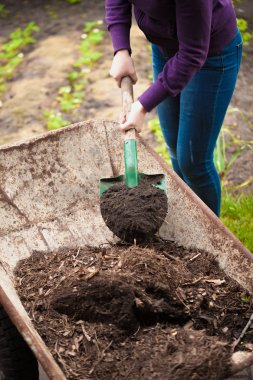 photo of woman taking compost from wheelbarrow with shovel