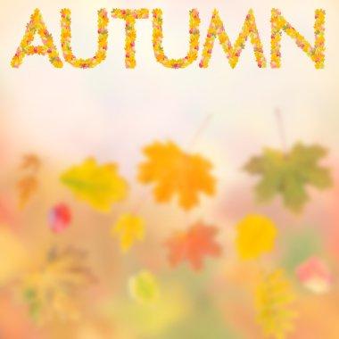 Autumn background for design IV