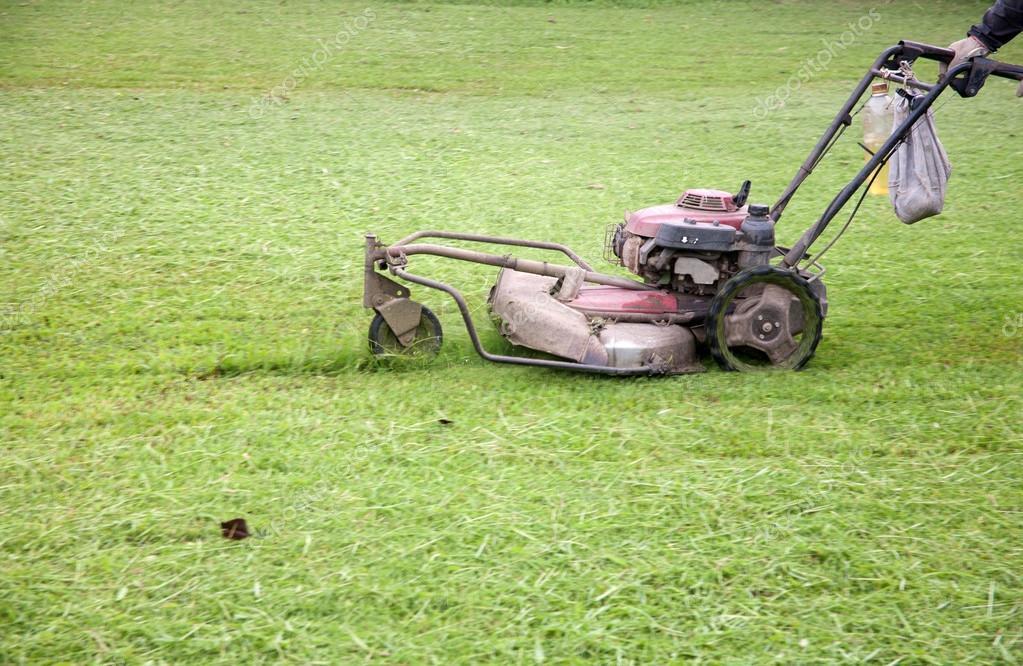 Fixing lawn