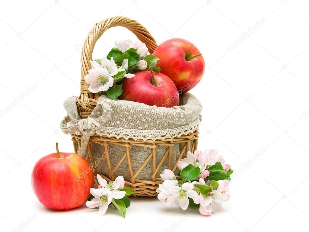 pommes m res et fleurs de pommes dans un panier sur un fond blanc photographie evgenyil. Black Bedroom Furniture Sets. Home Design Ideas