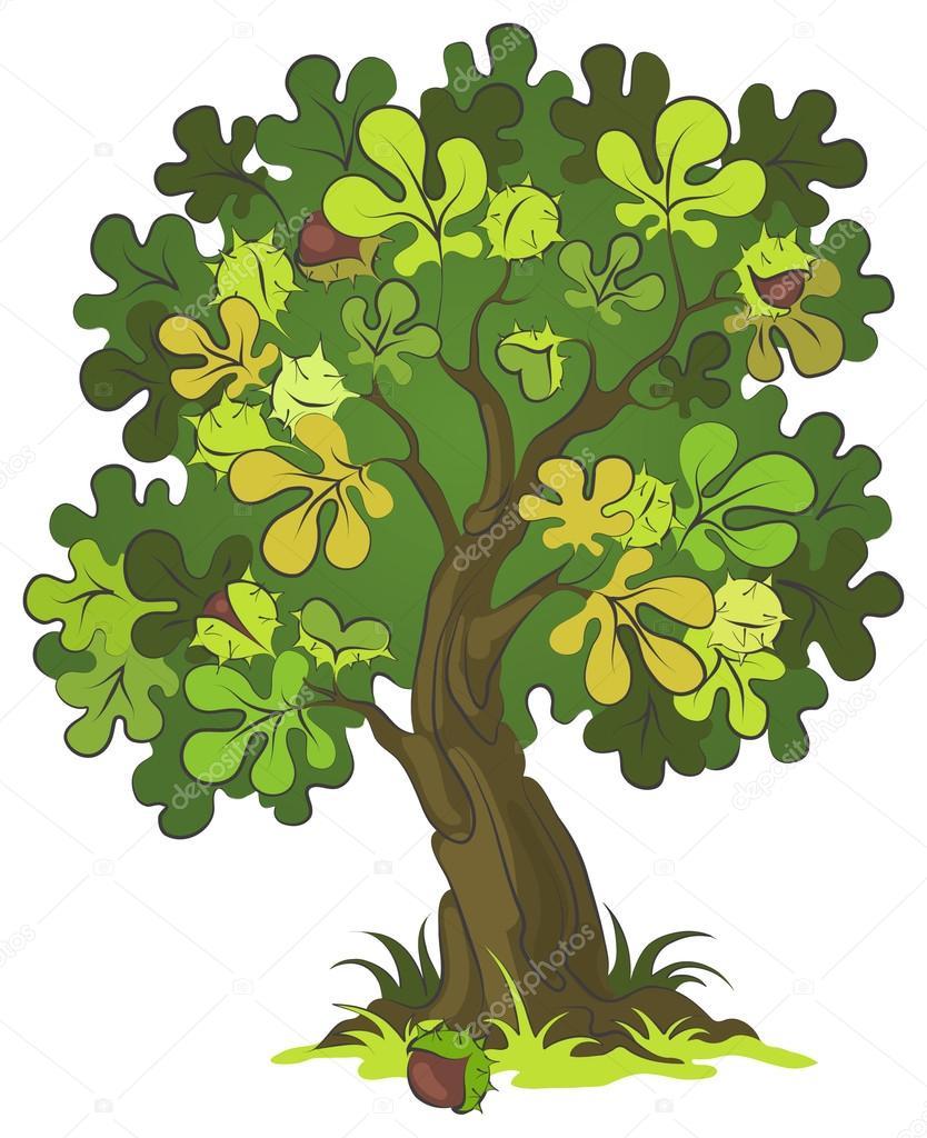 Dibujos Animados De Castañas árbol De Castañas De Dibujos