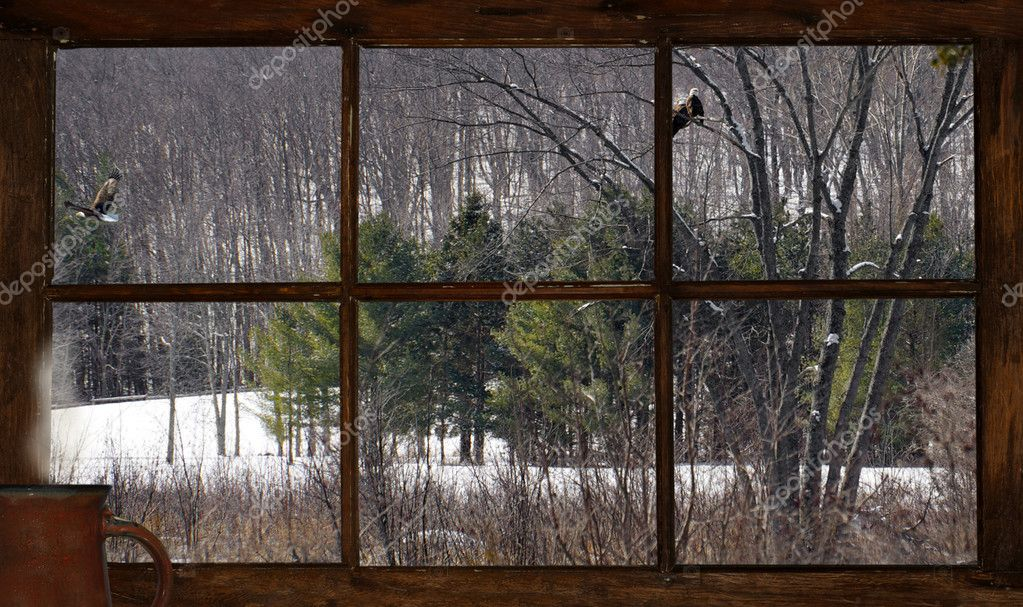 Winter lanscape through old window.