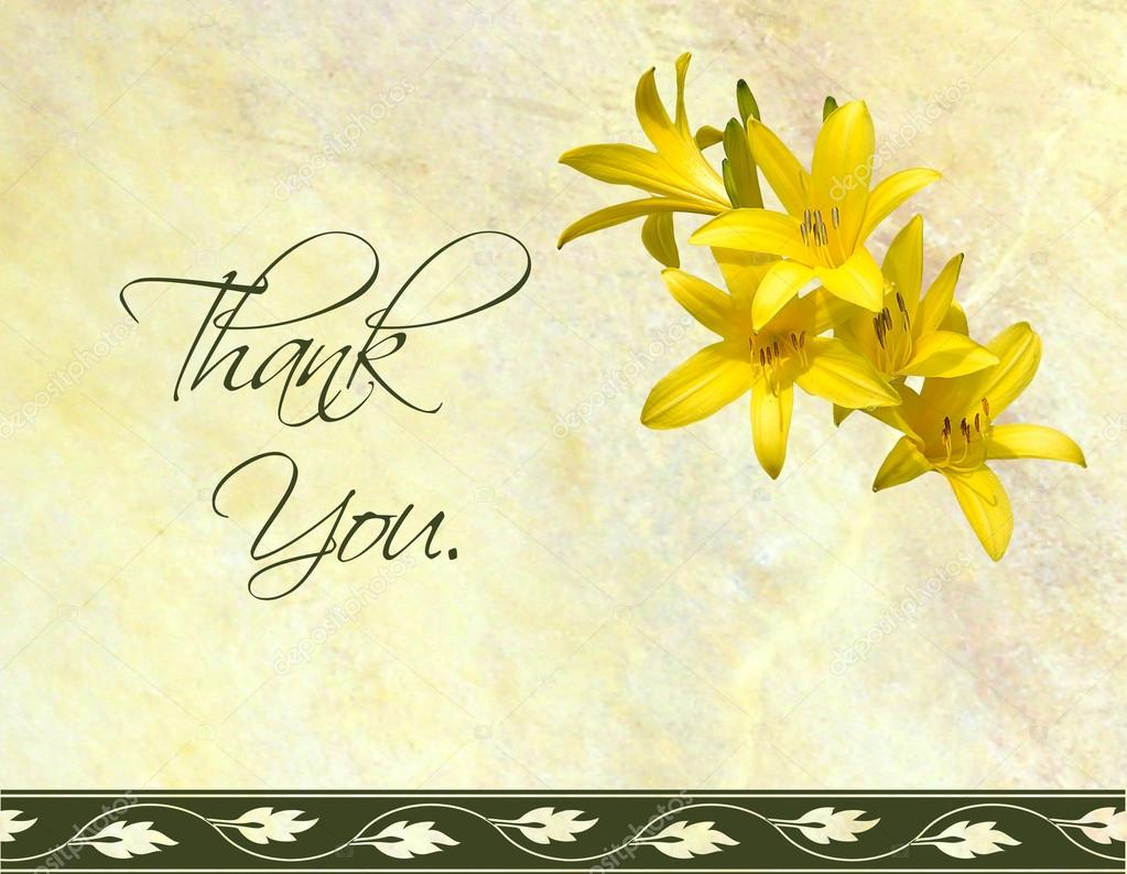 thank you card design u2014 stock photo kellyplz 35419903