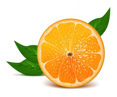 Half of orange with leaves