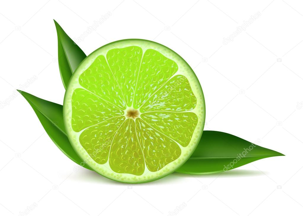 Half of lime with leaves
