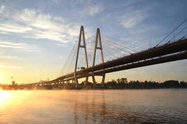 Cable-braced bridge across the river Neva