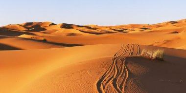 Path in the desert