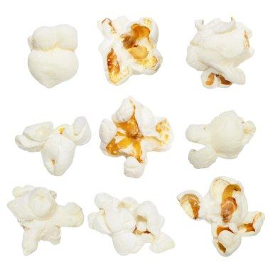 Macro popcorn isolated on white background