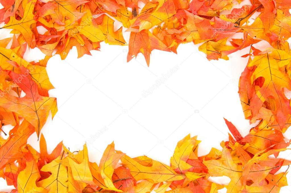 automne bordure de feuilles automne photographie miflippo 13932019. Black Bedroom Furniture Sets. Home Design Ideas