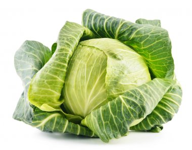 Fresh organic cabbage isolated on white