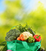zelený vak s řadou čerstvé biozeleniny v zahradě