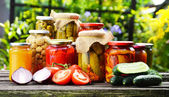 Photo Jars of pickled vegetables in the garden. Marinated food
