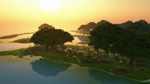 západ slunce a stromy v oceánu