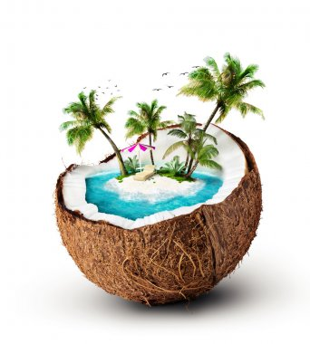 Tropical island in coconut. Travelling, vacation stock vector