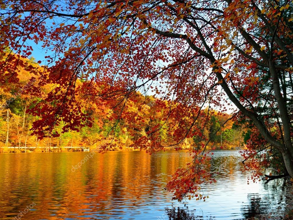 Glorious fall colors