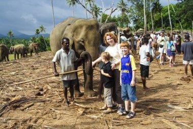 """Картина, постер, плакат, фотообои """"дети обнимаются со слонами в лагере в джунглях """", артикул 18187779"""