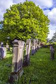 Fotografie jewish cemetery in St. Wendel at the Galgenberg