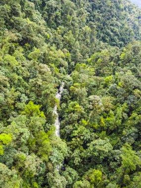 rio Mindo, western Ecuador, river running through cloudforest at