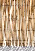 bambusz vakok