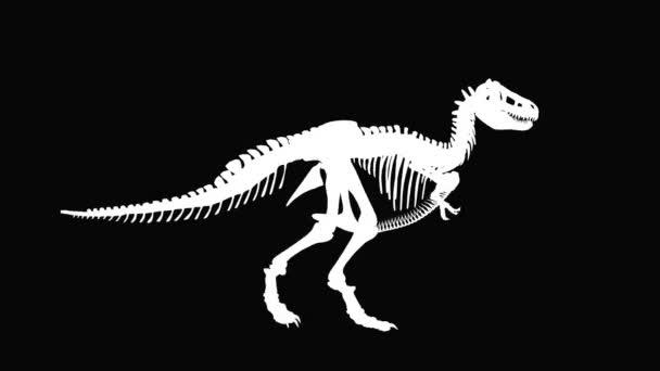 t-rex dinosaurus siluetu proti černé, bezešvé smyčka