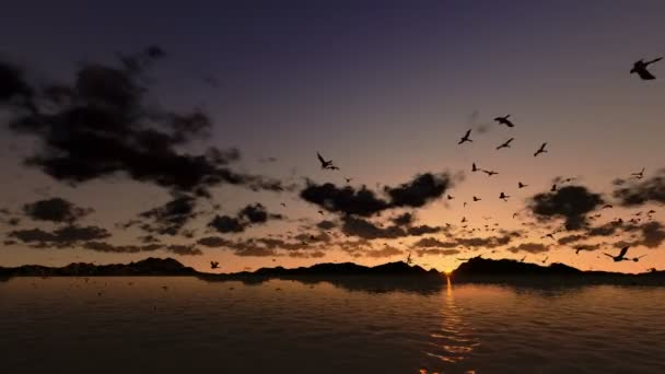 Ducks flying, timelapse sunrise with sea and mountain ridge
