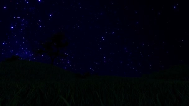 Tree Silhouette on Meadow and Starry Sky, Time Lapse, cam fly