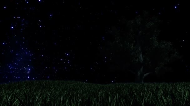Tree on Green Meadow and Starry Sky with Falling Star, Time Lapse