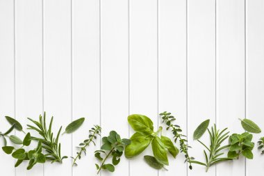 Fresh Herbs Border