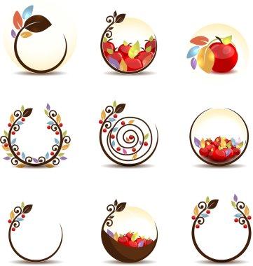 Apple fruit concept