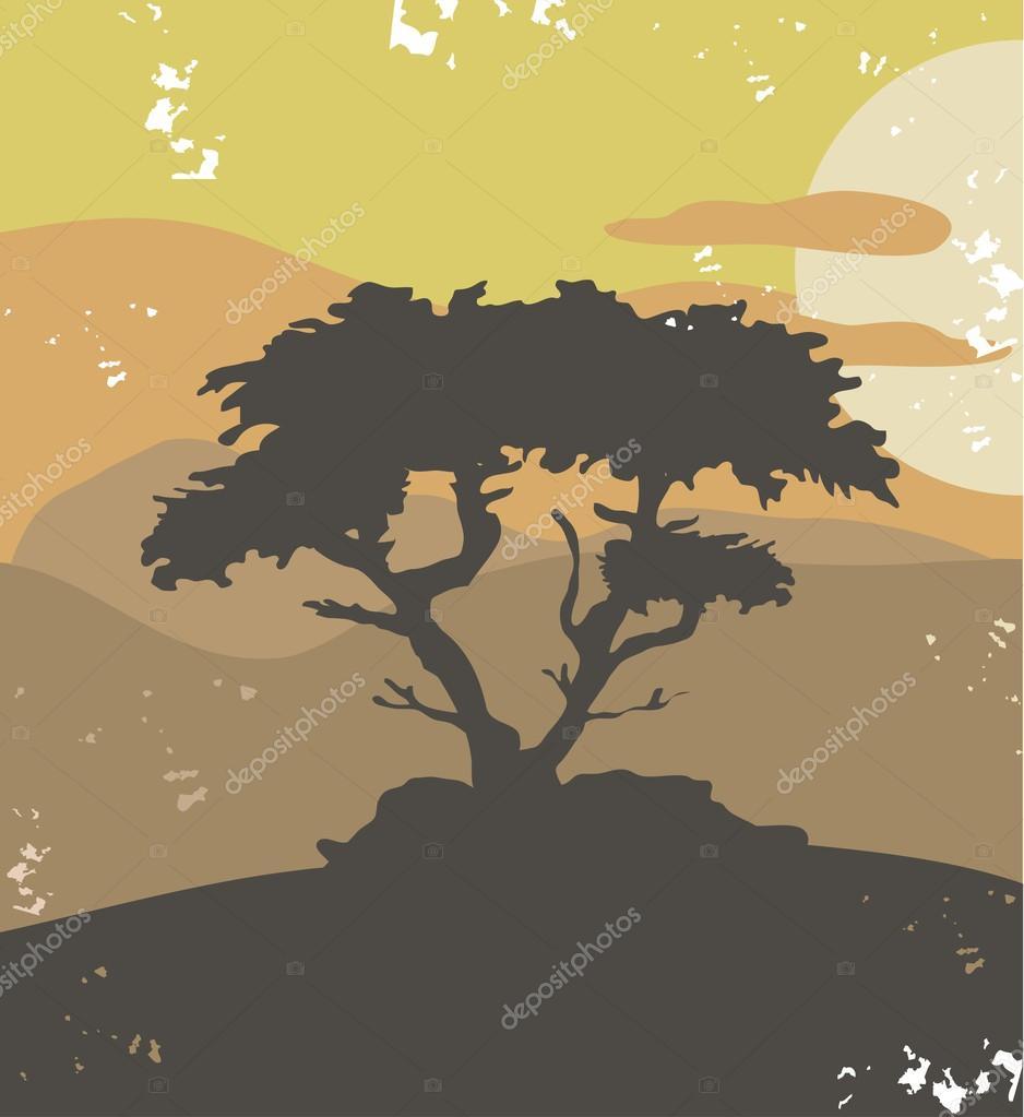 Pine tree,