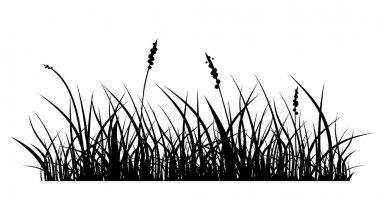black grass premium vector download for commercial use format eps cdr ai svg vector illustration graphic art design svg vector illustration graphic art design