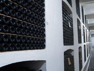 Wine vault of wine-making combine in the Crimea