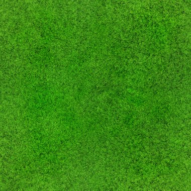 Seamless grass texture