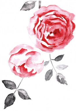 Background with a roses