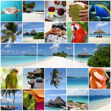 Summertime tropical island collage.
