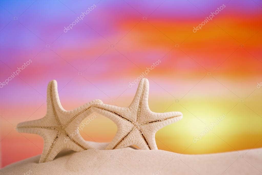 White starfish with sunrise sky