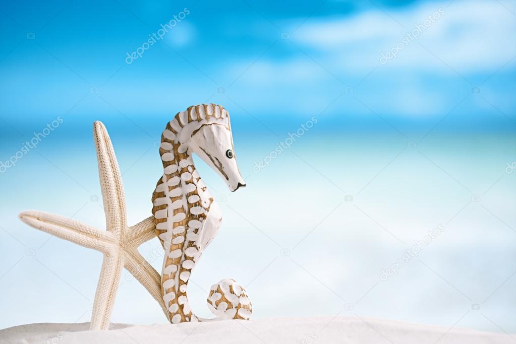 Cavalluccio marino con stella di mare bianco foto stock for Immagini cavalluccio marino
