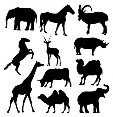 Vector silhouettes of anilmals