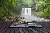 kreativní koncept obrázek v lesích na stránkách knihy