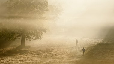 Joggers in Richmond Park, London on a crisp foggy Autumn morning