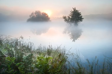 Beautiful Autumn Fall landscape over foggy misty lake wih glowin