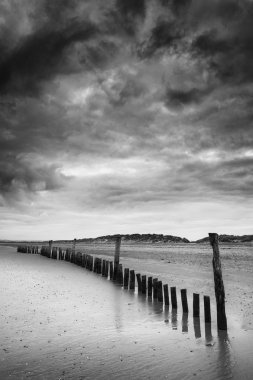 Black and white image of beach at low tide with wooden posts lan