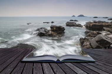 Creative concept pages of book Rocky shore and Brisons Rock in d