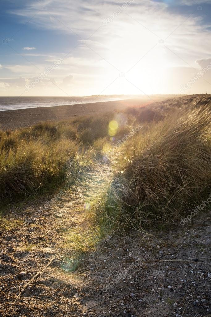 Blue sky Summer beach landscape with lens flare filter effect