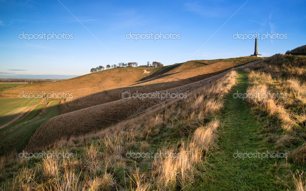 Ancient chalk white horse in landscape at Cherhill Wiltshire Eng