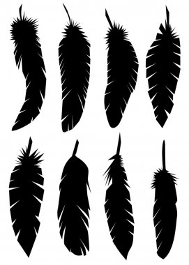 Feathers silhouettes