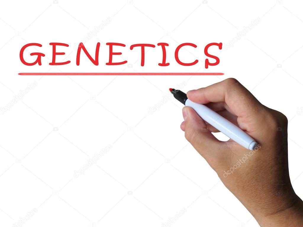 palabra genética muestra anatomía y composición genética — Fotos de ...