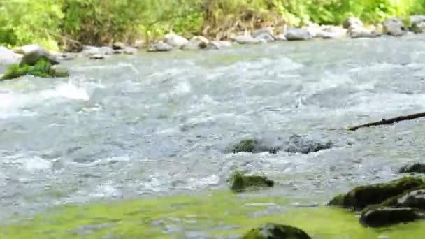 Water flowing in river